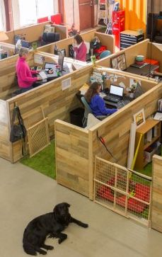 Kurgo, a Salisbury, Massachusetts-based startup that makes dog-travel gear, took over its own 4,000-square-foot warehouse in 2015.