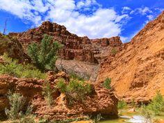 Havasupai (Fall+colors desert mountains waterfalls ). Photo by ricophx1