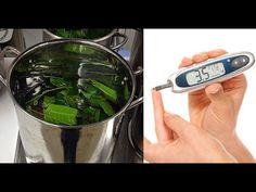 Are You Diabetic? Just Boil These Leaves And Improve Immunity Power -  CLICK HERE for the Big Diabetes Lie #diabetes #diabetestype1 #diabetestype2 #diabetestreatment Watch ► Are You Diabetic? Just Boil These Leaves And Improve Immunity Power Subscribe For More Videos : And Follow Us On ► Facebook : Twitter : Google + :   Thanks For Watching This Video Like and... - #Diabetes