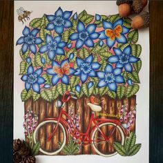 From blomster Mandela  Artist: Maria trolle  Medium: pencils