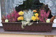.. Fall Flower Pots, Fall Flowers, Fall Planters, Outdoor Planters, Autumn, Halloween, Plants, Home Decor, Sodas