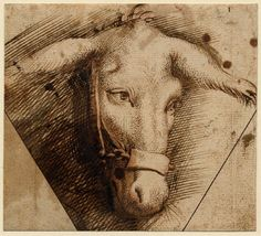 Study of a donkey's head from the circle or school of Peter Paul Rubens, dated 1592-1640.