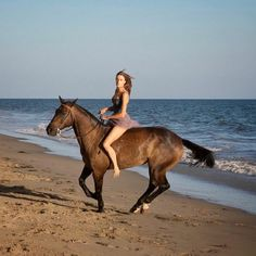 A woman rides bareback on a horse on the beach. Woman Riding Horse, Bareback Riding, Beach Rides, Horse Girl Photography, Elephant Ride, Horse Costumes, Most Beautiful Horses, Show Horses, Equestrian