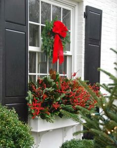 Beginning to look a lot like Christmas! Shutters!