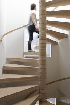 Oak Veneered Plywood Spiral Staircase Cantilevered from Central Column by Eldridge London, Joe Mellows Furniture (http://www.joemellowsfurniture.co.uk/) and Johnson Friel Building Ltd. (http://www.johnsonfriel.com/)