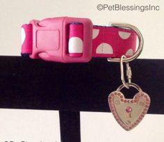 Fuschia Pink Polka Dot Dog Collar