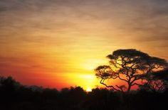 Co warto wiedzieć, przed wyjazdem do Kenii?