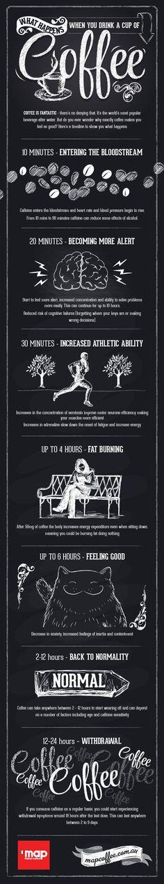 Cafeína, infografía. Nicolas Artusi.
