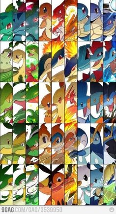 All evolutions of all starter pokemon