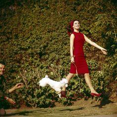 Natalie Wood. Mars conjunct Sun.