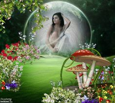 in my fairy land