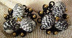 Shell Earrings ♥