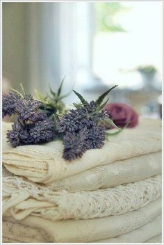 It's also time to launder sheets and towels while people are at breakfast and gone for the day. We use Lavender scents in all our linen, unless told otherwise by our guest.