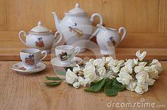 Medicinal plants - acacia flower (Robinia pseudoacacia)