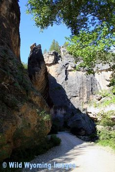 Crazy Woman Canyon  (near Buffalo, Wyoming)