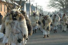 """Busójárás"" - winter aconite folklore - Mohacs, Hungary"