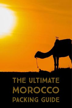 Going to Morocco and don't know what to pack for your trip? Read here for all the essentials!
