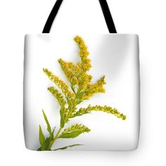 Goldenrod Tote Bag by Christina Rollo