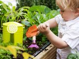 ideas/projects for getting children involved while outside!
