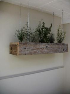 herb garden for your kitchen. I could so do this and add a led to the bottom for extra stove light!