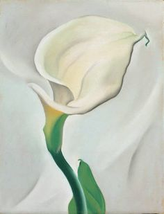 Georgia O'Keeffe, Calla Lily Turned Away, 1923, Pastel on Paper-faced Cardboard, 14 x 107/8 inches, Gift of the Burnett Foundation, ©Georgia O'Keeffe Museum