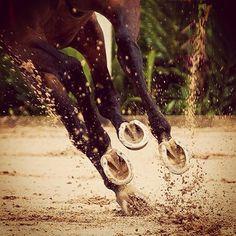 A little mud never hurt anyone!