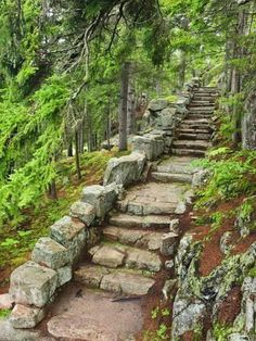 Nov 2019 - Photographic Print: A Stone Staircase at the Thuya Gardens in Northeast Harbor, Maine, Usa by Jerry & Marcy Monkman : Landscape Design, Garden Design, Garden Stairs, Stone Stairs, Sloped Garden, Sloped Backyard, Backyard Landscaping, Landscaping Ideas, Modern Landscaping