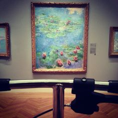 Where did you go while recovering after foot surgery?  The art museum is a great place to visit and a Knee Walker makes it much easier to see Monet than painful old fashion crutches.