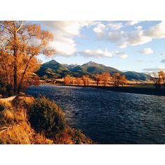 Golden hour on the Yellowstone River. Photo via @gillgcleary. #MontanaMoment