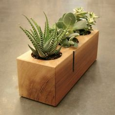 16 Minimalistic Handmade Wooden Planter Designs 16 Minimalistic Handmade Wooden Planter Designs is a collection meant to give you ideas about interior decorating with planters. Terrarium Cactus, Succulent Planter Diy, Diy Planter Box, Planter Pots, Succulents, Planter Ideas, Rustic Planters, Wooden Planter Boxes, Outdoor Planters