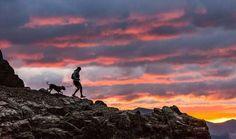 PC: @dfeatherstone | Sunday funday - - - - - - -                              ------------ ♂️ Curated by: @runner.without.a.cause ------------   #runners #instarunner #runnerscommunity #instarunners #ultrarunning #instarun #ultratraining #trailrun #running #trailporn #mountainrunning #runningmotivation #loverunning #runninggirl #runnersworld #runnerspace #runnerslife #runnershoutouts #wearetherunners  #runningwithdogs #trailrunning #dogs #doglover #ilovemydog #dogsofinstagram