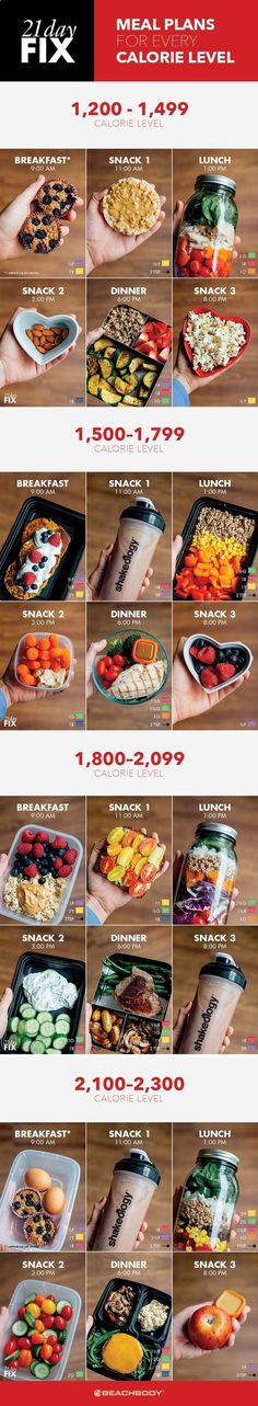 Fat Burning Meals Plan-Tips If you're on the 21 Day Fix meal plan, check out these quick and easy meal prep ideas for every calorie level. - We Have Developed The Simplest And Fastest Way To Preparing And Eating Delicious Fat Burning Meals Every Day For The Rest Of Your Life