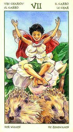 The Chariot - Spirit of Flowers Tarot