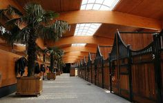 Horse stables in Dubai That will be how my barn looks someday …