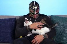 We Surprised A Pro Wrestler With Kittens And It'll Make You Grin Uncontrollably