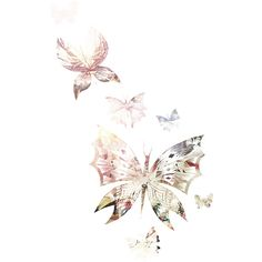 ZaSlike.com - Besplatni upload slika! » Lyra's Photoshop ❤ liked on Polyvore featuring backgrounds, butterflies, effects, fillers, art, details, embellishments, textures, borders and phrase