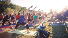 Have you signed up for Camp Yogi? If not, get $50 off your registration today by clicking this image.