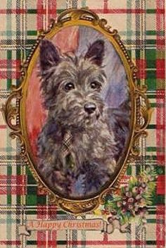 Scottish Terrier with Tartan - Chicfluff Vintage Greeting Cards, Vintage Christmas Cards, Retro Christmas, Vintage Postcards, Christmas Postcards, Christmas Note, Tartan Christmas, Christmas Pictures, Holly Christmas