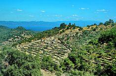 Traveling virtually to Greece
