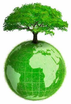 Giornata Nazionale dell'Albero: a #Sassari verranno piantati 101 alberi