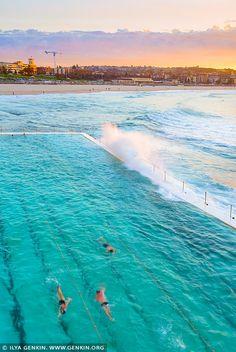 Bondi Beach Icebergs at Sunrise, Sydney, NSW, Australia Black And White Words, Black And White Prints, Bondi Icebergs, Black And White Landscape, Kid Pool, Bondi Beach, Cool Pools, Photo Library, Seaside