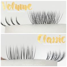 "109 Likes, 11 Comments - Dollface Lashes & Beauty (@kirsten_dollface) on Instagram: ""Volume vs. Classic - What's your favorite? ✨✨✨ #Dollface #lash #lashes #lashextensions…"""