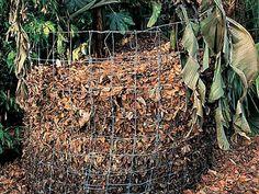 www.rustica.fr - Les feuilles mortes valent de l'or - Protéger du froid