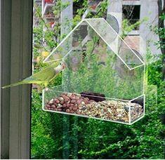 Fenêtre Transparente Mangeoire à oiseaux en verre Graines de Cacahuètes Hanging Ventouse Oiseau Spot tableau