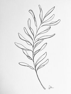 Doodle Designs, Tattoo Designs, Drawing Sketches, Art Drawings, Wildflower Drawing, Plant Tattoo, Leaf Drawing, Tattoo Outline, Floral Illustrations
