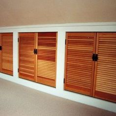 Storage & Closets Photos Sloped Ceiling Design, Pictures, Remodel, Decor and Ideas - page 3