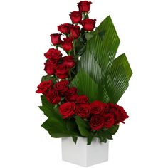 Flower Delivery in Aventura, North Miami, Sunny Isles, Hallandale Beach. Contemporary Floral Arrangements.