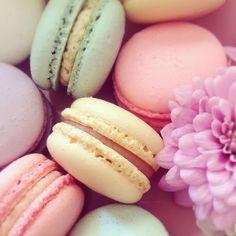 Pastel Macaroons | Pastel Macaroons Wallpaper Currently craving: a pastel