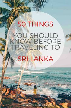 50 travel tips for the first-time travelers to Sri Lanka. Everything you should know before going to Sri Lanka!