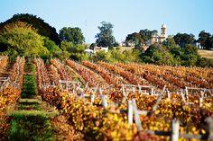 Conheça o Uruguai além dos vinhos · Revista ADEGA